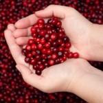 Храни при инфекции на пикочните пътища