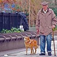Всекидневното изминаване на поне 5 км пеша в бърз ход има много добър ефект върху здравето на мъжа и неговата простатна жлеза.