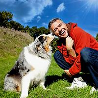 Кучетата надушват ракът на простатата, когато подушат урината на пациента.