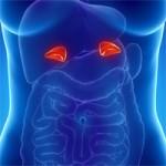 Надбъбречната жлеза